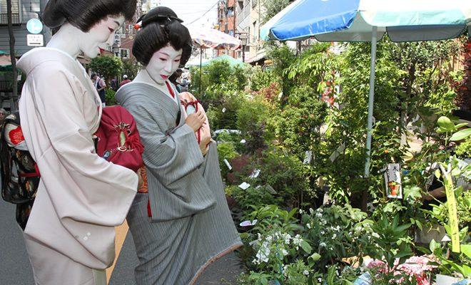 お富士山の植木市